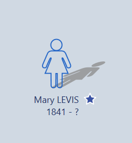 Mary Levis